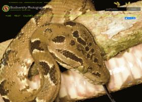 biodiversityphotography.org
