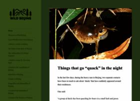 birdingbeijing.com