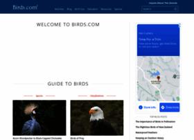 birds.com