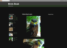 birdsbeak.blogspot.com