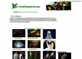 birdwallpapers.com