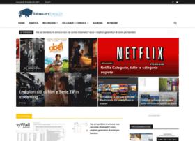bisontech.net