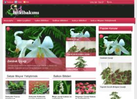 bitkibakimi.info