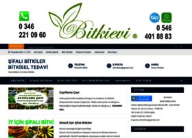bitkievi.com
