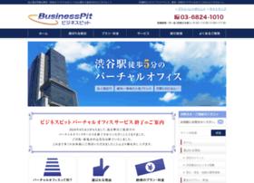 biz-pit.com