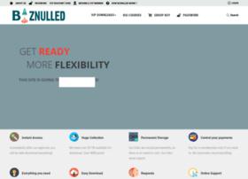 biznulled.com