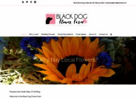 blackdogflowerfarm.com