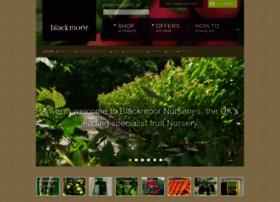 blackmoor.co.uk