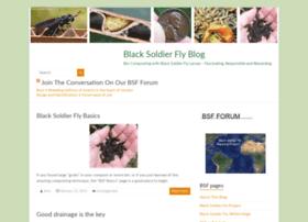 blacksoldierflyblog.com