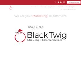 blacktwigllc.com