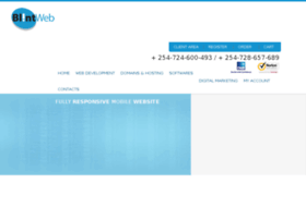 blintweb.com