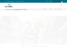 blog.alldogboots.com