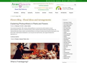 blog.avasflowers.net