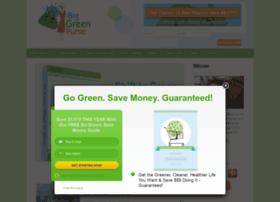 blog.biggreenpurse.com