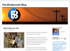 blog.bluebonnetelectric.com