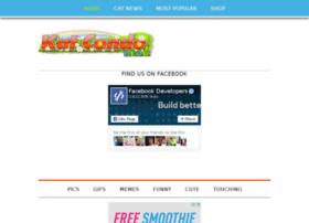 blog.katcondo.com