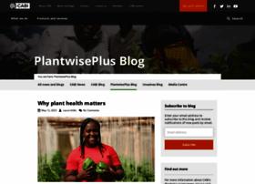 blog.plantwise.org