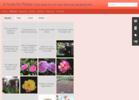 blog.rosecaretips.com