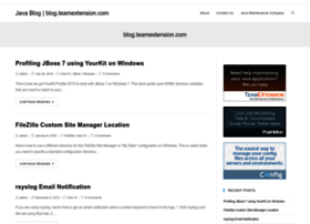 blog.teamextension.com