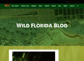 blog.wildfloridairboats.com