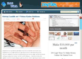 blog.zekiturk.com