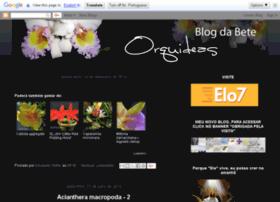 blogdabeteorquideas.blogspot.com.br