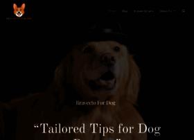 blogpet.net