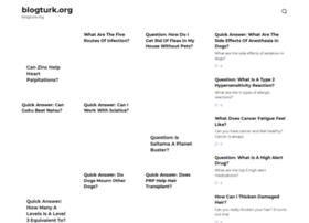 blogturk.org