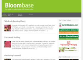 bloombase.org.uk
