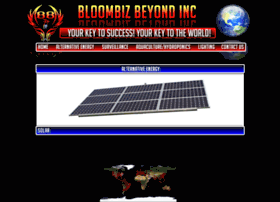 bloombizbeyond.com