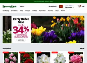 bloomingbulb.com