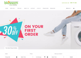 blossomdrycleaners.com