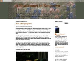 bluebonnetinbeantown.blogspot.com