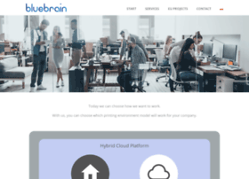 bluebrain.pl
