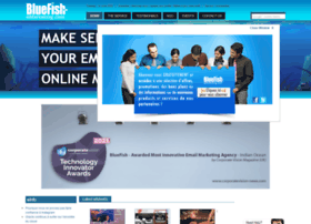 bluefish-emarketing.co