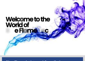 blueflame.com