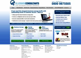 bluemarkconsultants.co.uk