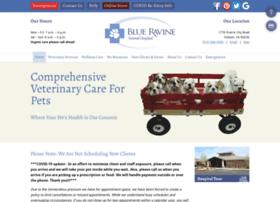 blueravineanimalhospital.com