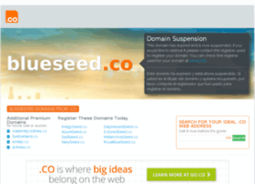 blueseed.co