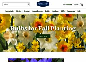 bluestoneperennials.com