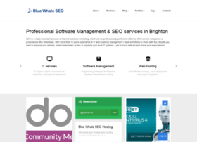 bluewhaleseo.com