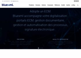 bluexml.com