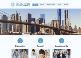 bluezebraappointmentsetting.com