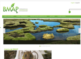 bmap.com.pe