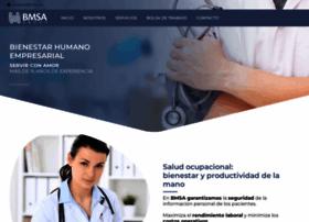 bmsa.com.mx