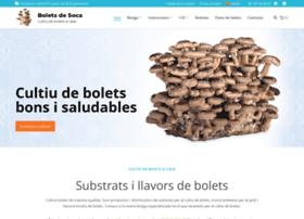 boletsdesoca.com