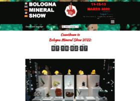 bolognamineralshow.com