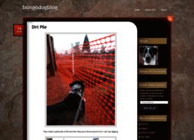 bongodogblog.com