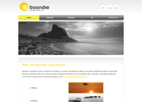 boondieconsultants.co.uk