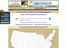bordercollie.rescueshelter.com